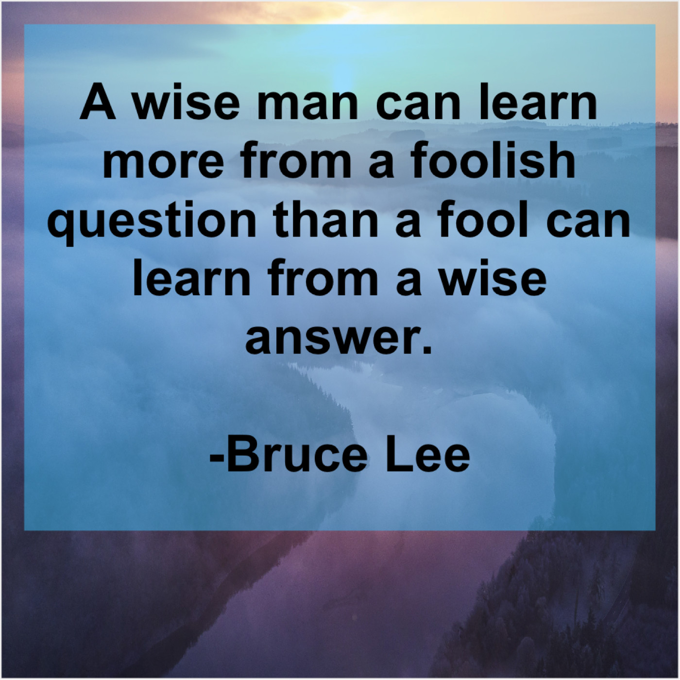Bruce Lee A Wise Man Can Learn